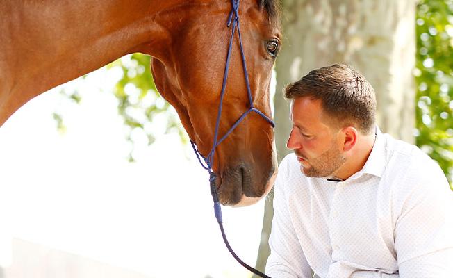Beziehung Pferd Mensch